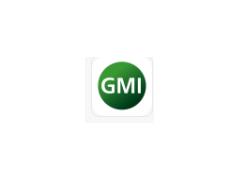 GMI安装包