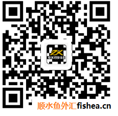 1234qMT4手机版下载